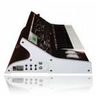 Tress Webdesign Moog Seite